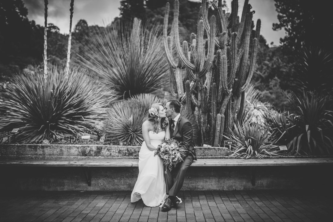 Beautiful wedding at Berkeley Botanical Garden by Becca Henry Photography