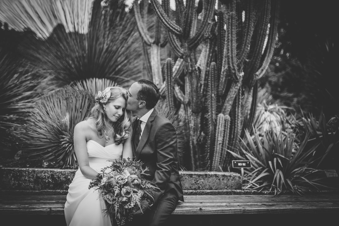 Beautiful wedding photo at Berkeley Botanical Garden by Becca Henry Photography