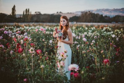 Bride in a field of flowers at Aztec Dahlia farm in Petaluma by Becca Henry Photography. Bouquet by Beijafloralbotanical.