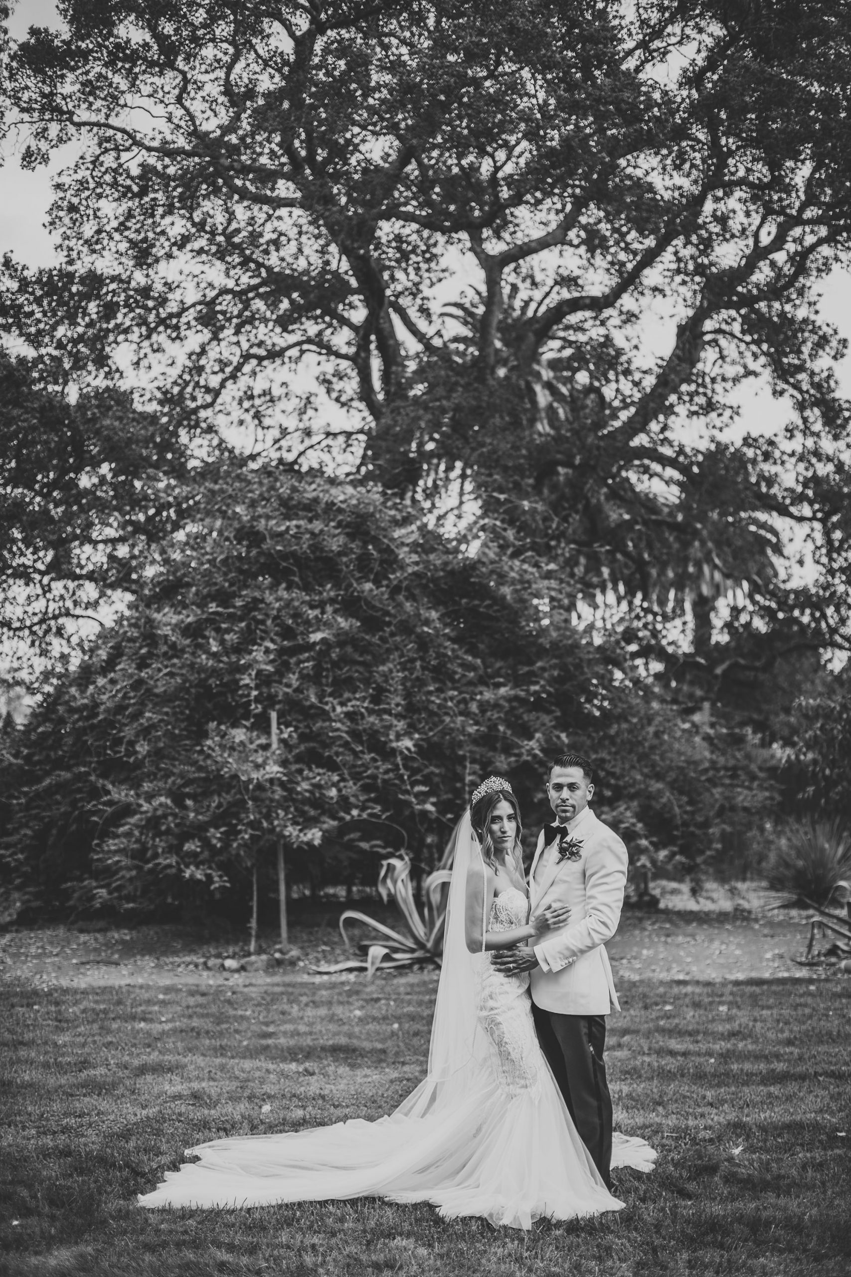 BW portrait of bride and groom at Harvest Inn in St Helena